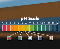 pH scale and salsa ingredients pH level
